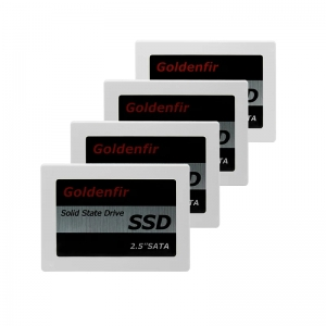 SSD Goldenfir de 32 Go a 2 To